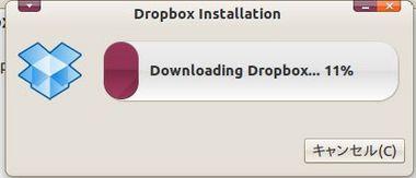 SS-dropbox-007.JPG