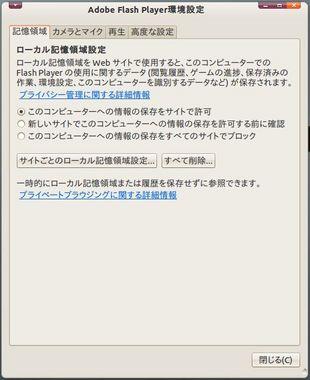 SS-flash-10-3-006.JPG