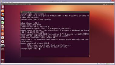 SS-raring-install-to-vm-001.JPG