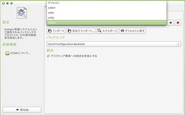 SS-ccsm-bug1-002.JPG