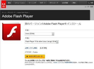 SS-flash11-013.JPG